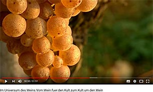 Im Universum des Weins. YouTube-Video